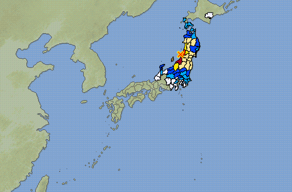 allerta tsunami