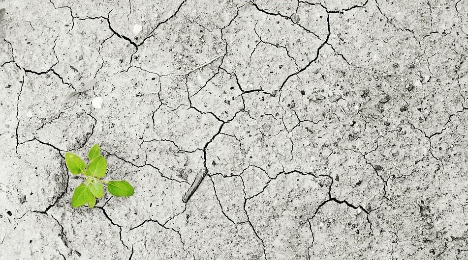 """""""Capire il cambiamento climatico"""": scatti al MANN sul riscaldamento globale"""